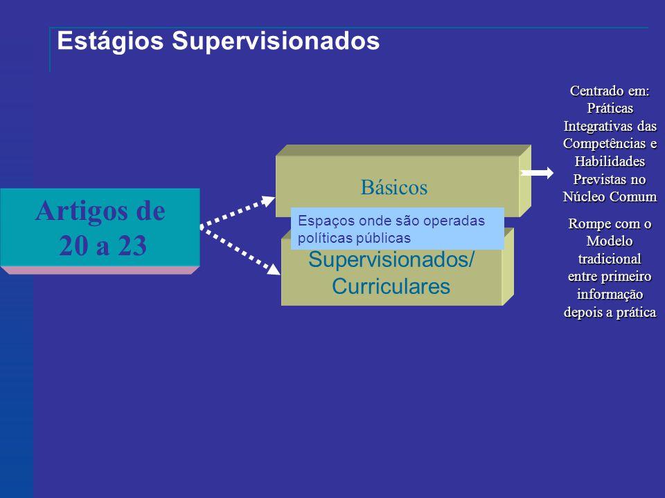 Estágios Supervisionados