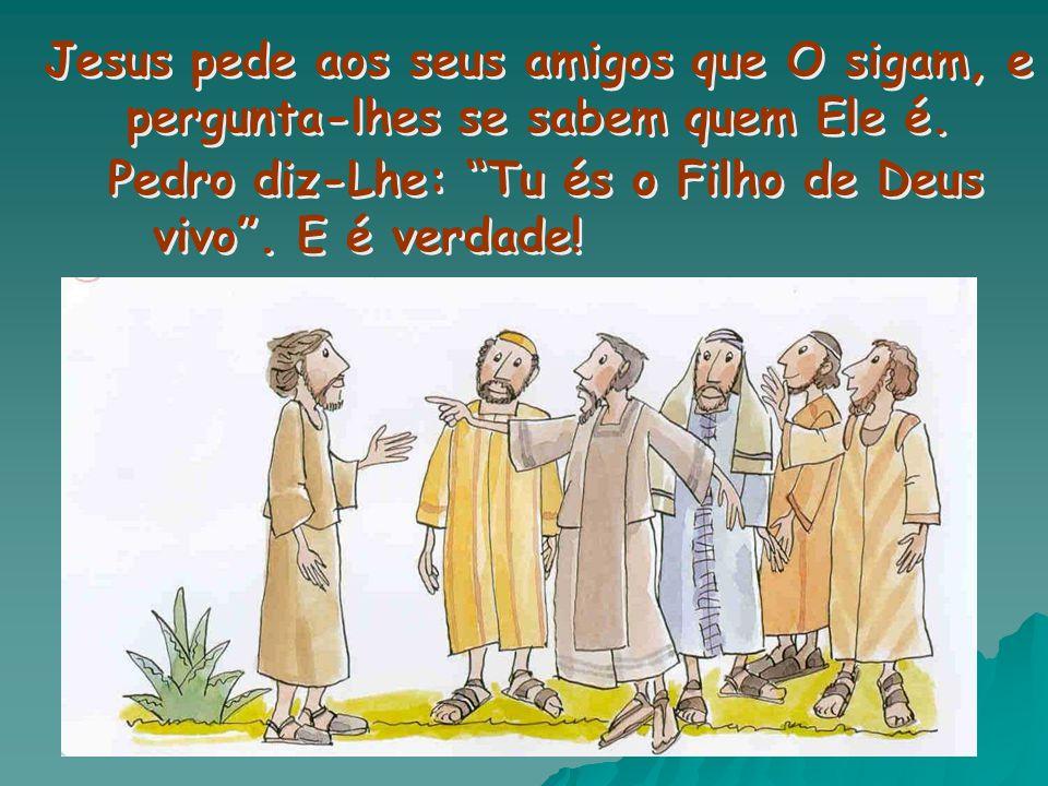 Jesus pede aos seus amigos que O sigam, e pergunta-lhes se sabem quem Ele é.