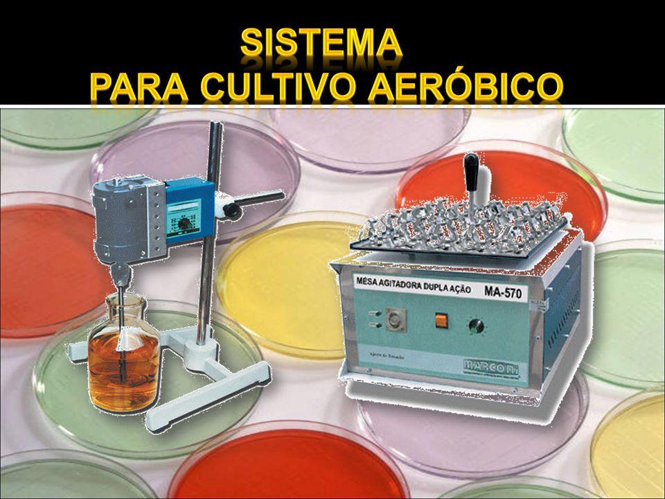Sistema para cultivo aeróbico
