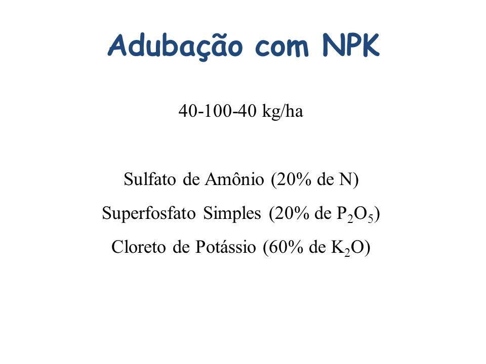 Adubação com NPK 40-100-40 kg/ha Sulfato de Amônio (20% de N)