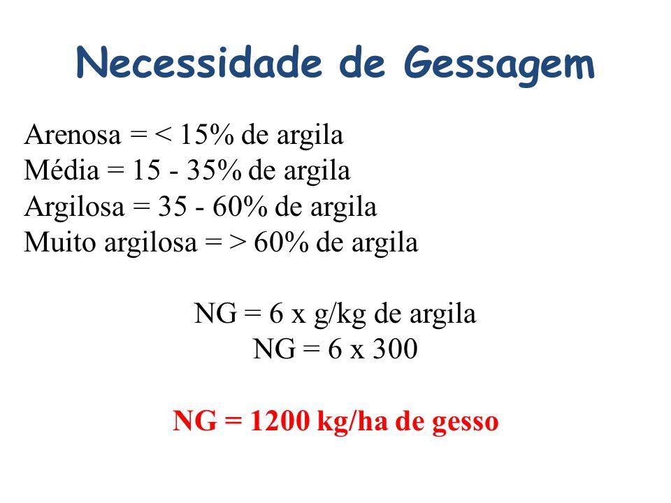 Necessidade de Gessagem