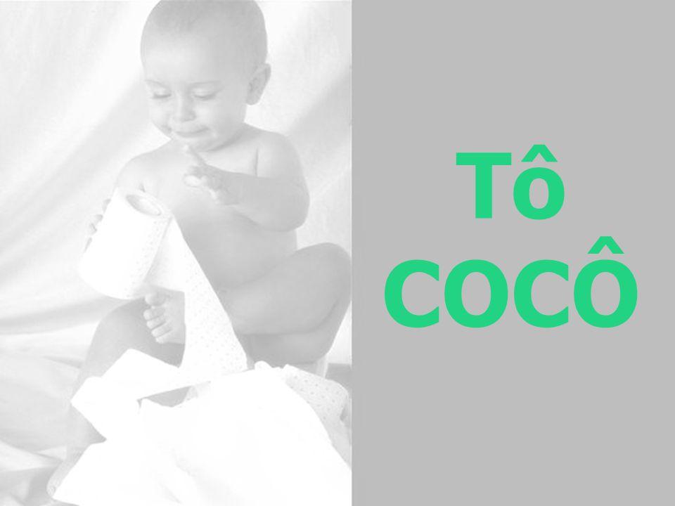 Tô COCÔ