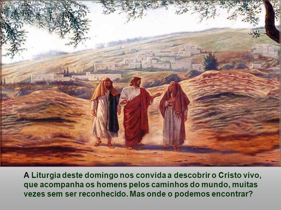A Liturgia deste domingo nos convida a descobrir o Cristo vivo, que acompanha os homens pelos caminhos do mundo, muitas vezes sem ser reconhecido.