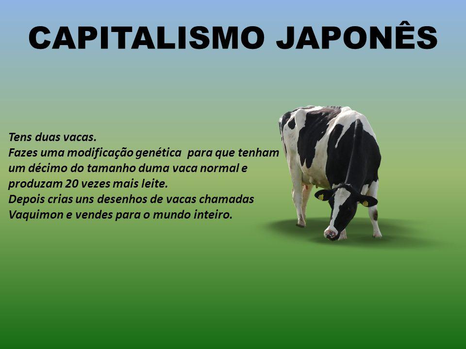 CAPITALISMO JAPONÊS