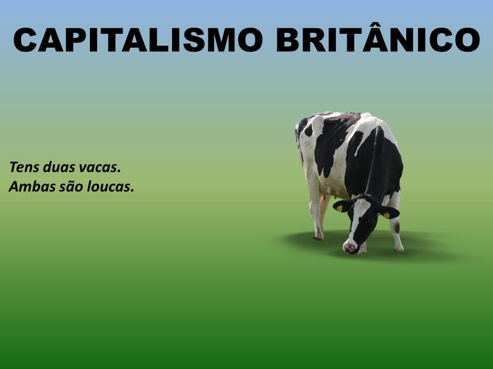 CAPITALISMO BRITÂNICO
