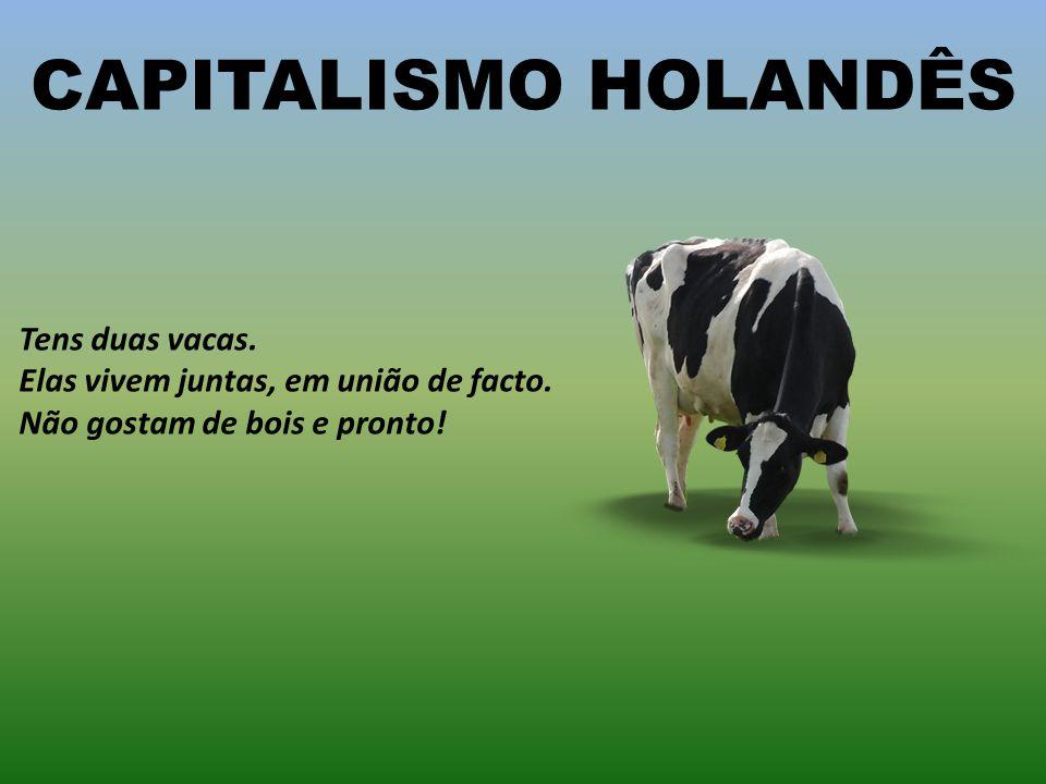 CAPITALISMO HOLANDÊS Tens duas vacas. Elas vivem juntas, em união de facto.