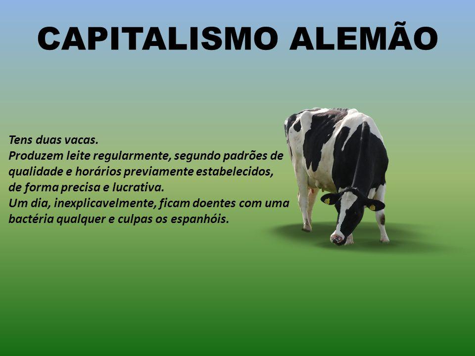 CAPITALISMO ALEMÃO Tens duas vacas. Produzem leite regularmente, segundo padrões de qualidade e horários previamente estabelecidos,