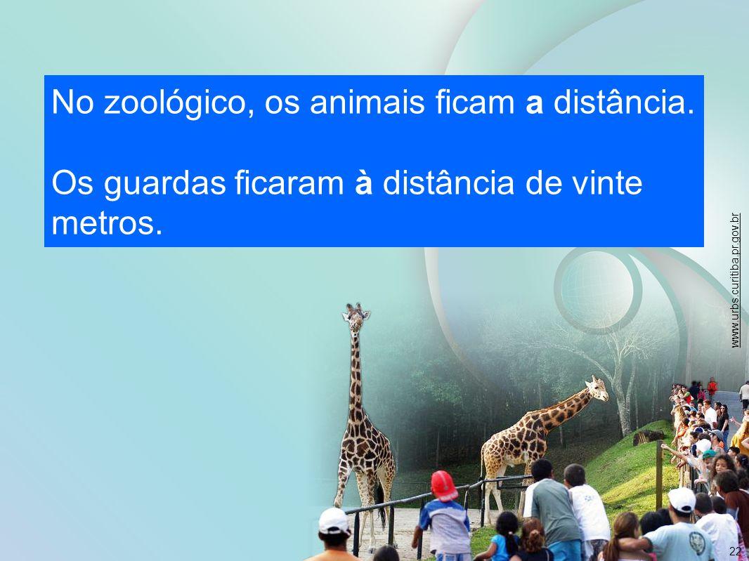 No zoológico, os animais ficam a distância.