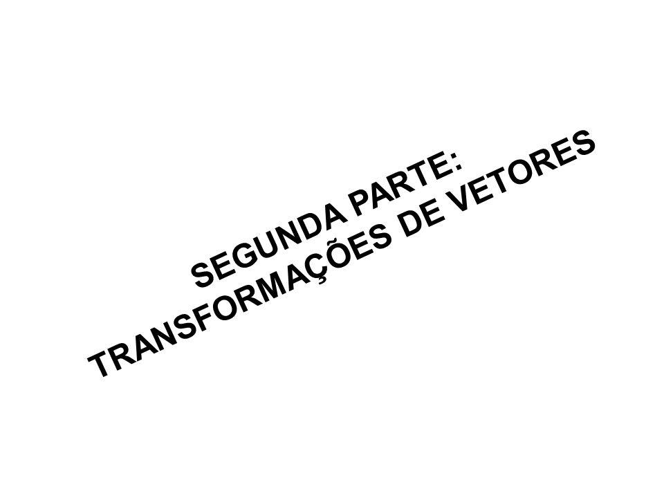 SEGUNDA PARTE: TRANSFORMAÇÕES DE VETORES