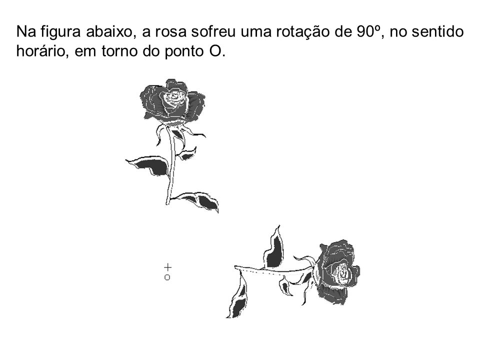 Na figura abaixo, a rosa sofreu uma rotação de 90º, no sentido horário, em torno do ponto O.