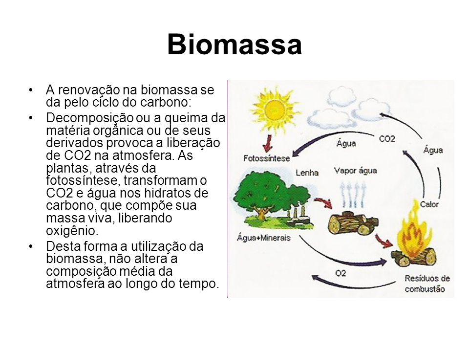 Biomassa A renovação na biomassa se da pelo ciclo do carbono: