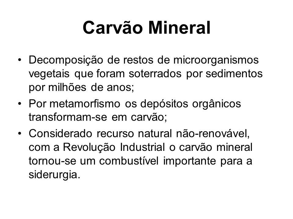 Carvão Mineral Decomposição de restos de microorganismos vegetais que foram soterrados por sedimentos por milhões de anos;