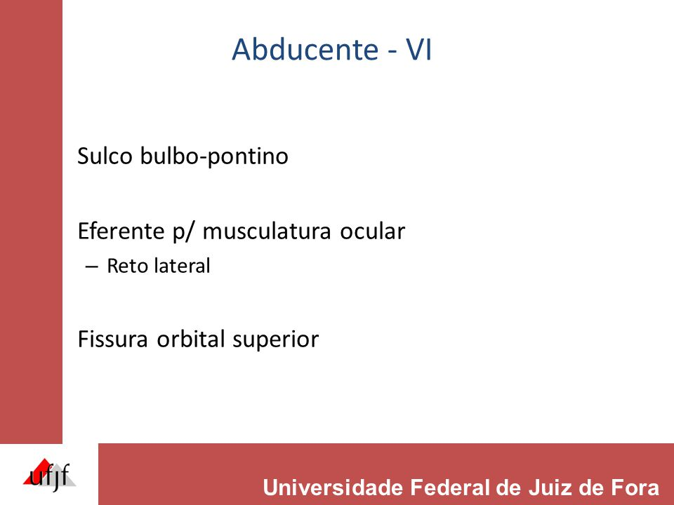 Abducente - VI Sulco bulbo-pontino Eferente p/ musculatura ocular