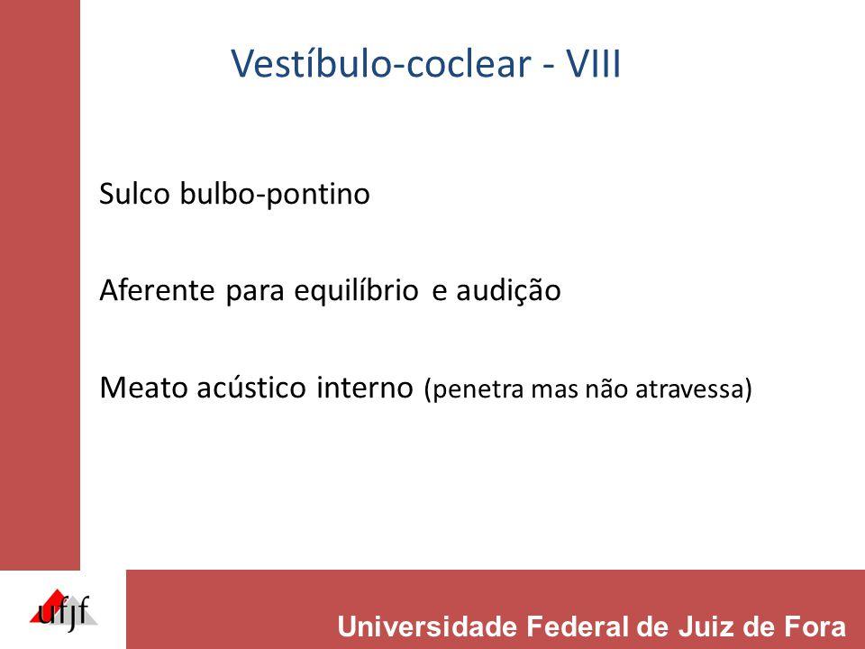 Vestíbulo-coclear - VIII