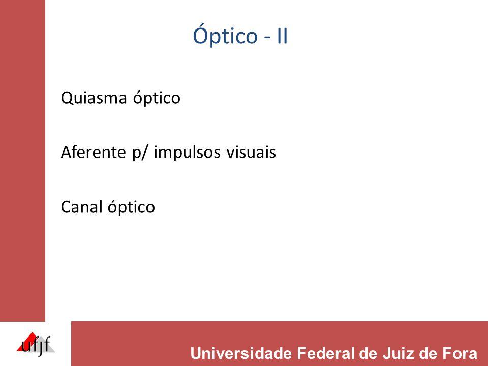 Óptico - II Quiasma óptico Aferente p/ impulsos visuais Canal óptico