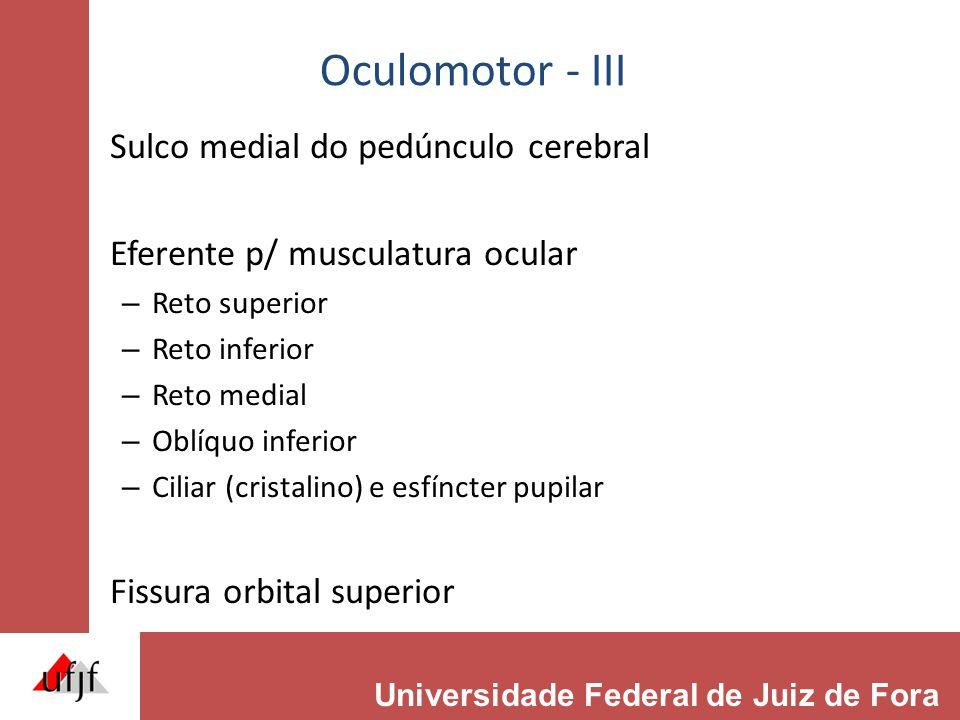 Oculomotor - III Sulco medial do pedúnculo cerebral