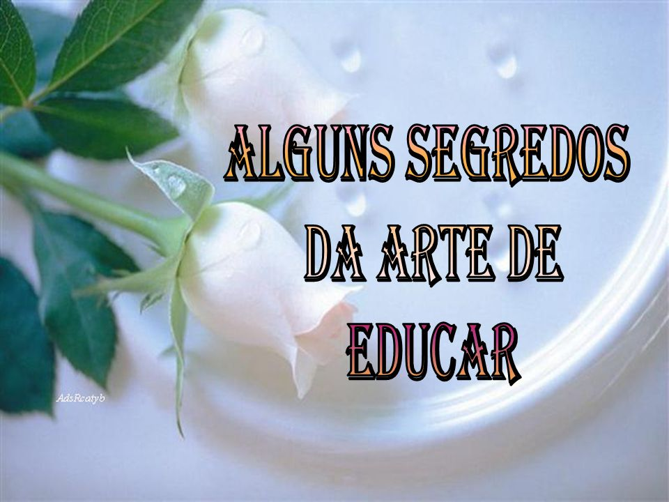 ALGUNS SEGREDOS DA ARTE DE EDUCAR