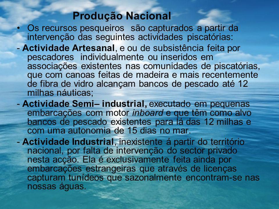 Produção Nacional Os recursos pesqueiros são capturados a partir da intervenção das seguintes actividades piscatórias: