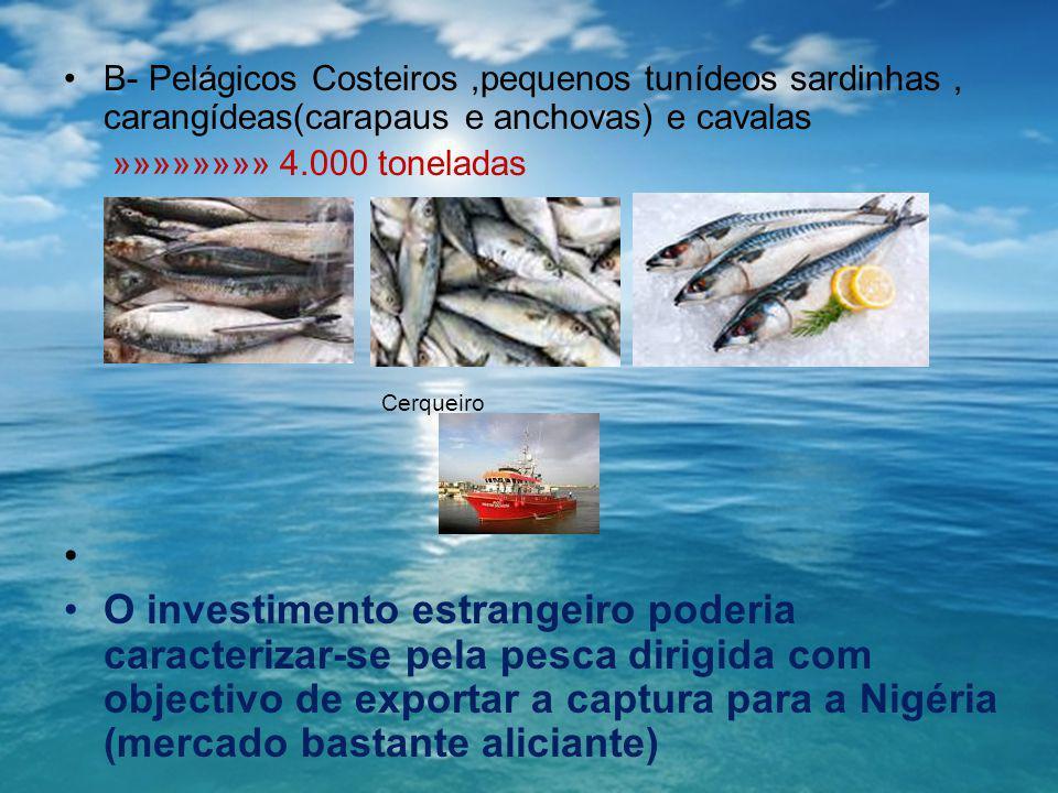 B- Pelágicos Costeiros ,pequenos tunídeos sardinhas , carangídeas(carapaus e anchovas) e cavalas