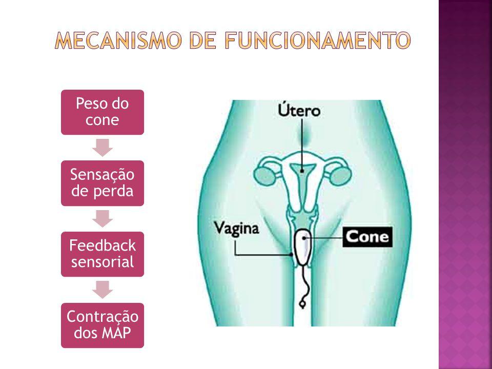 MECANISMO DE FUNCIONAMENTO