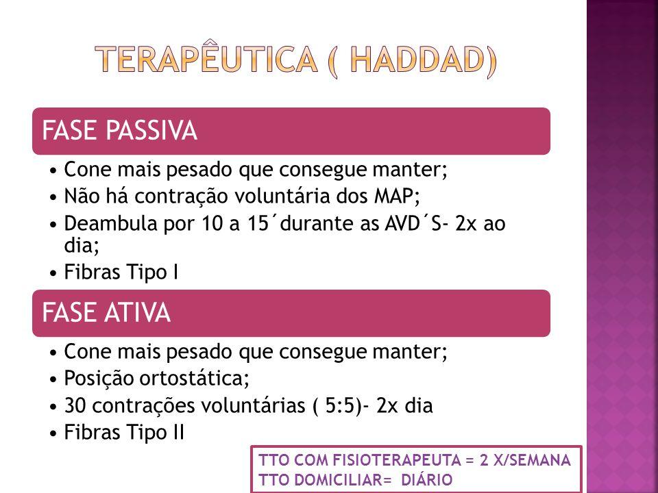 TERAPÊUTICA ( HADDAD) TTO COM FISIOTERAPEUTA = 2 X/SEMANA