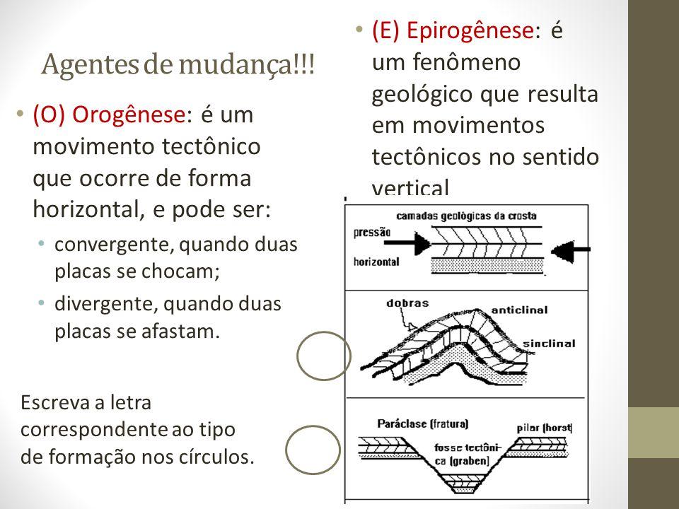 (E) Epirogênese: é um fenômeno geológico que resulta em movimentos tectônicos no sentido vertical