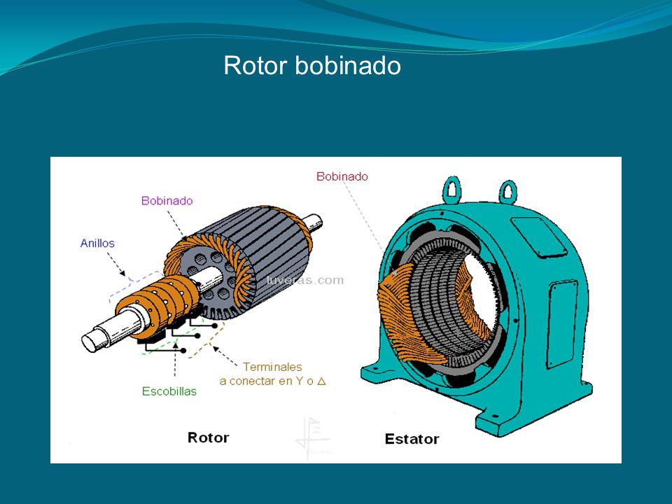 Rotor bobinado