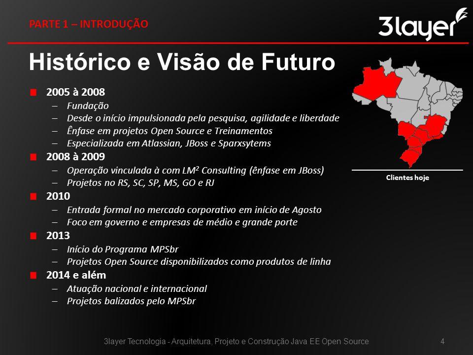 Histórico e Visão de Futuro