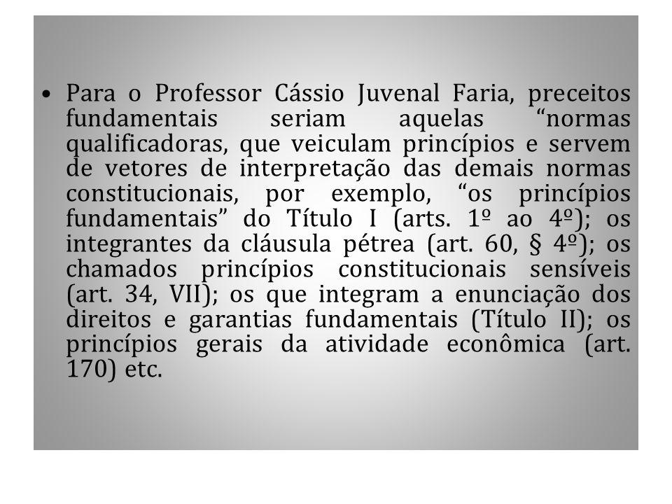 Para o Professor Cássio Juvenal Faria, preceitos fundamentais seriam aquelas normas qualificadoras, que veiculam princípios e servem de vetores de interpretação das demais normas constitucionais, por exemplo, os princípios fundamentais do Título I (arts.