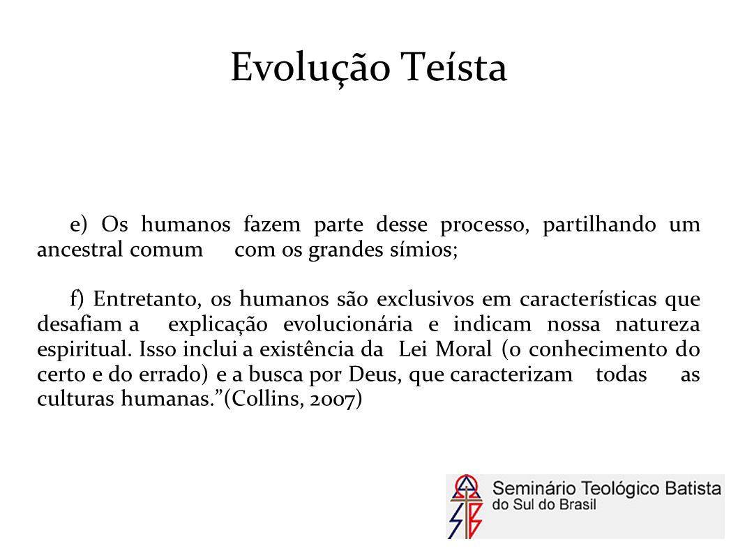 Evolução Teísta e) Os humanos fazem parte desse processo, partilhando um ancestral comum com os grandes símios;