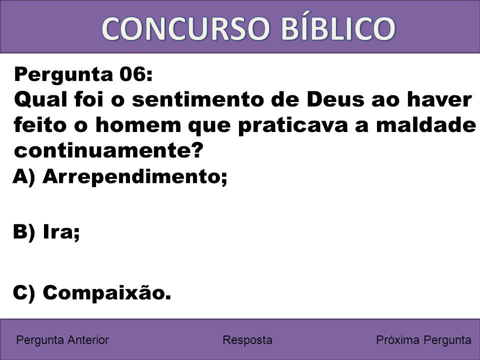 CONCURSO BÍBLICO Pergunta 06: Qual foi o sentimento de Deus ao haver feito o homem que praticava a maldade continuamente