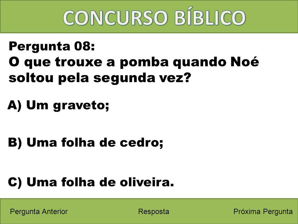 CONCURSO BÍBLICO Pergunta 08: O que trouxe a pomba quando Noé soltou pela segunda vez A) Um graveto;