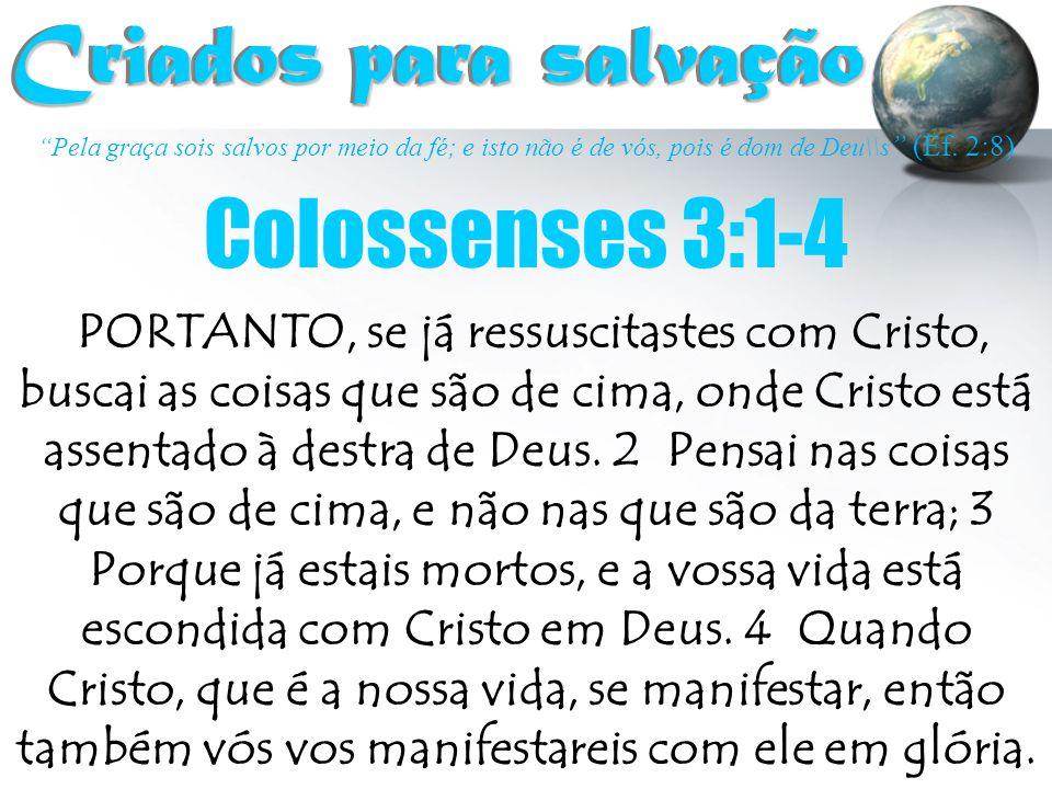 Criados para salvação Colossenses 3:1-4