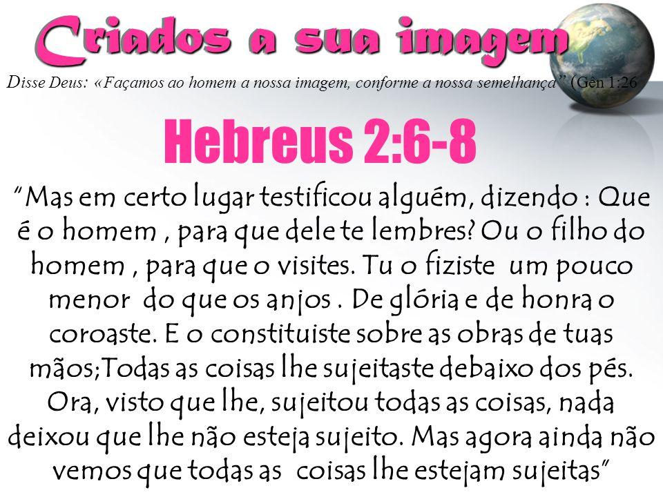 Criados a sua imagem Hebreus 2:6-8