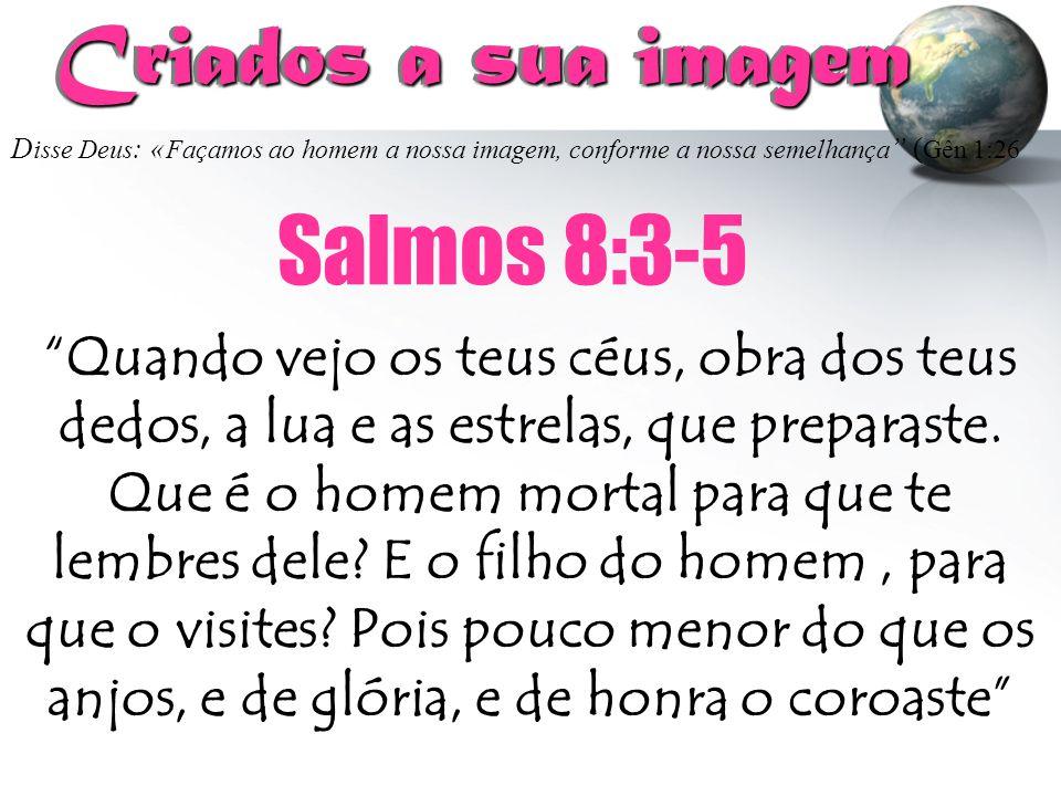 Criados a sua imagem Salmos 8:3-5