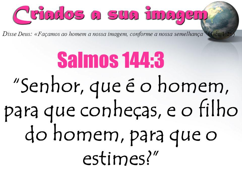Criados a sua imagem Salmos 144:3