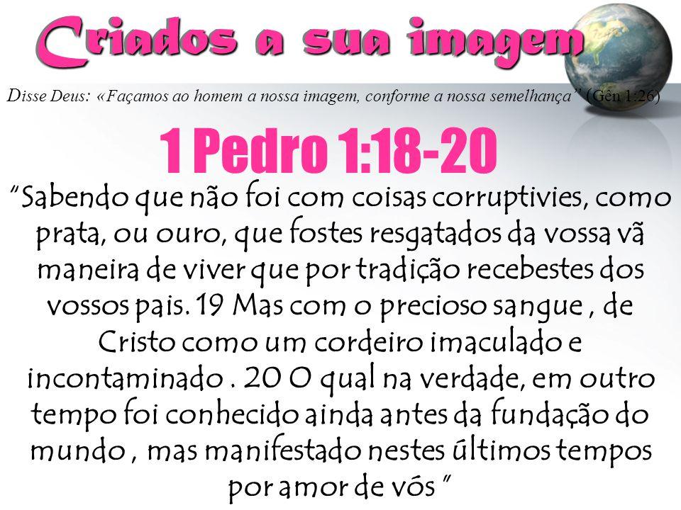 Criados a sua imagem 1 Pedro 1:18-20