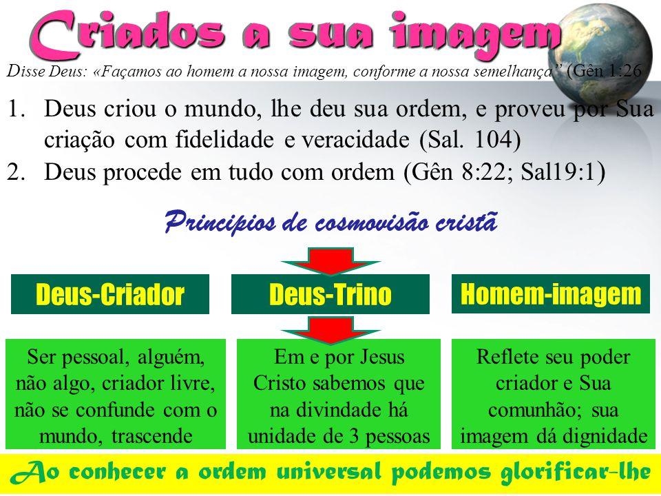 Principios de cosmovisão cristã