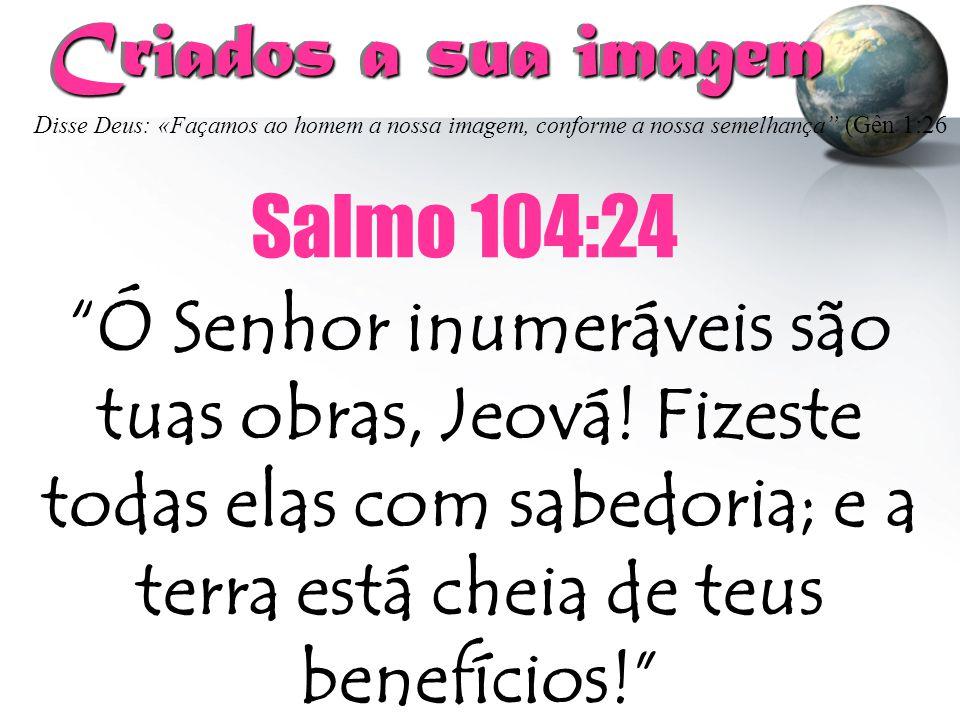 Criados a sua imagem Salmo 104:24