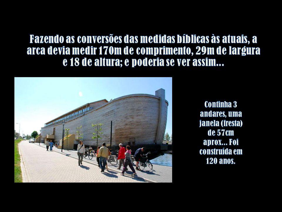 Fazendo as conversões das medidas bíblicas às atuais, a arca devia medir 170m de comprimento, 29m de largura e 18 de altura; e poderia se ver assim...