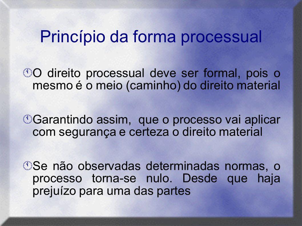 Princípio da forma processual
