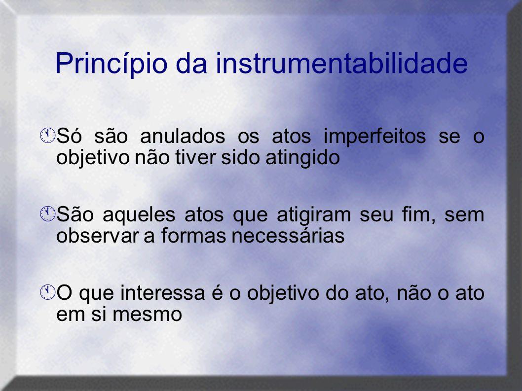 Princípio da instrumentabilidade