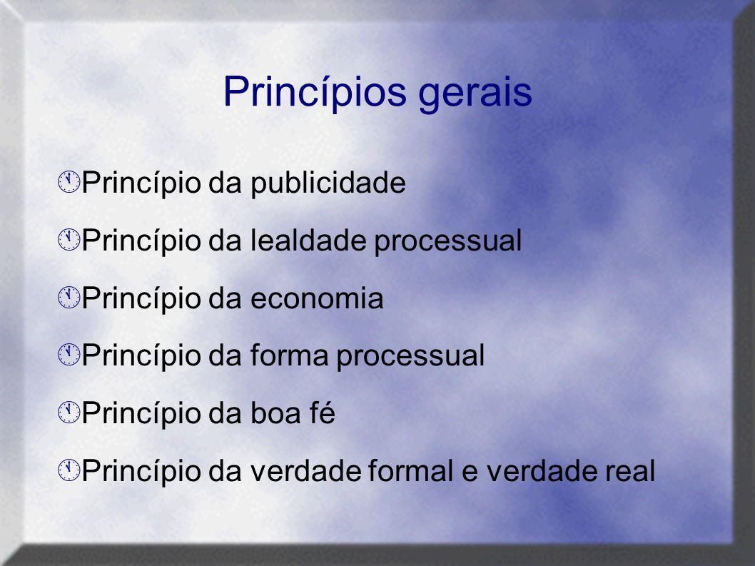 Princípios gerais Princípio da publicidade