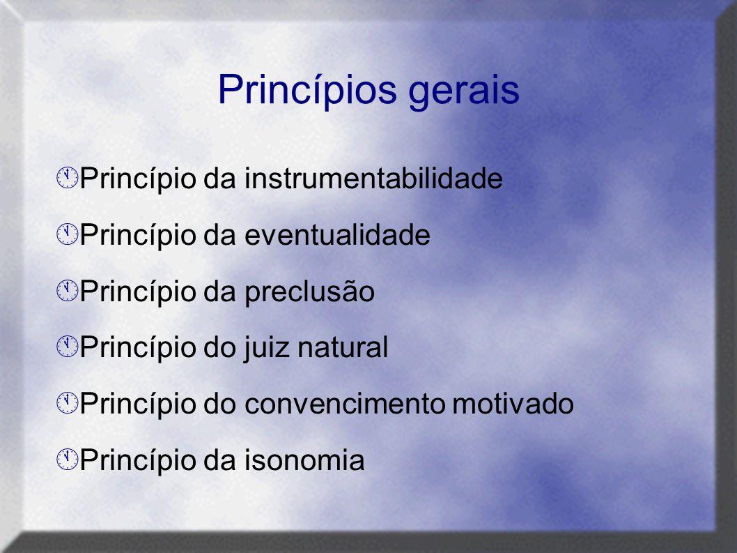 Princípios gerais Princípio da instrumentabilidade