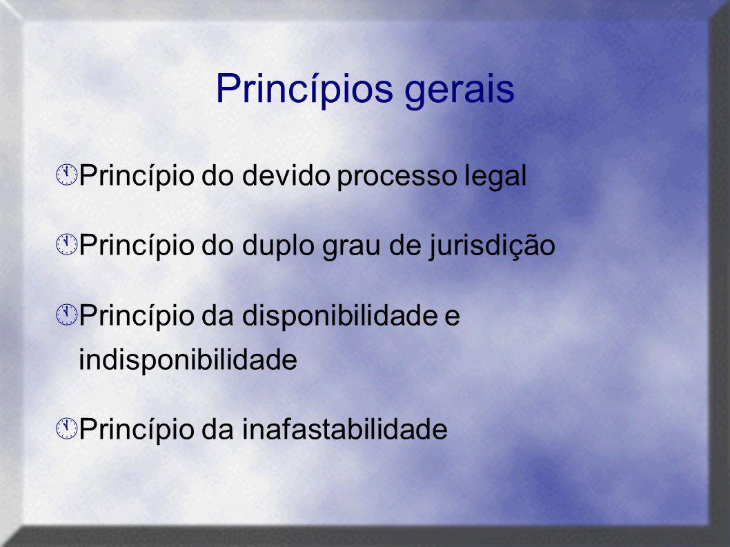 Princípios gerais Princípio do devido processo legal