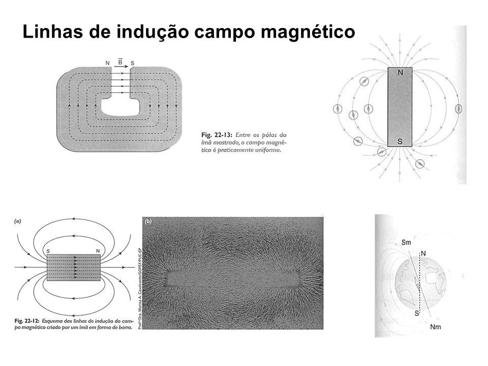 Linhas de indução campo magnético