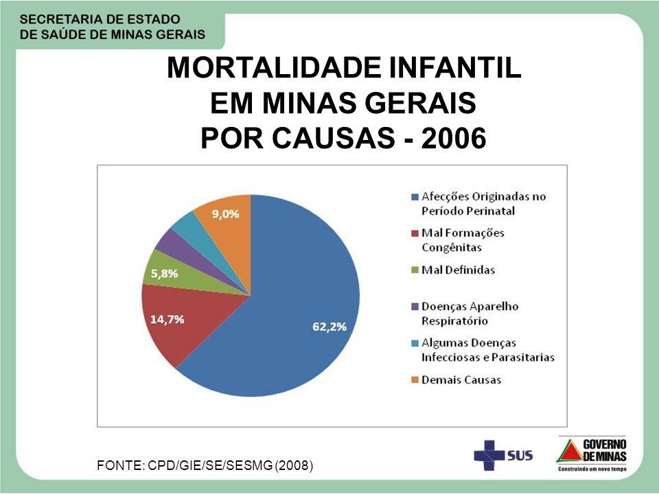 MORTALIDADE INFANTIL EM MINAS GERAIS POR CAUSAS - 2006