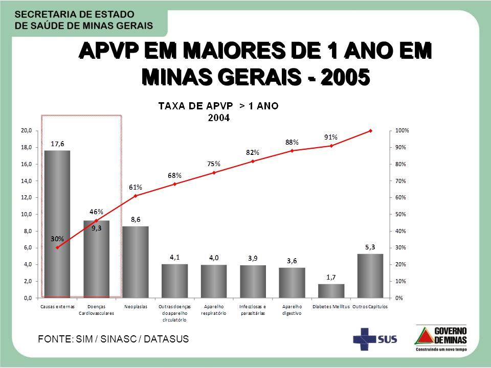 APVP EM MAIORES DE 1 ANO EM MINAS GERAIS - 2005