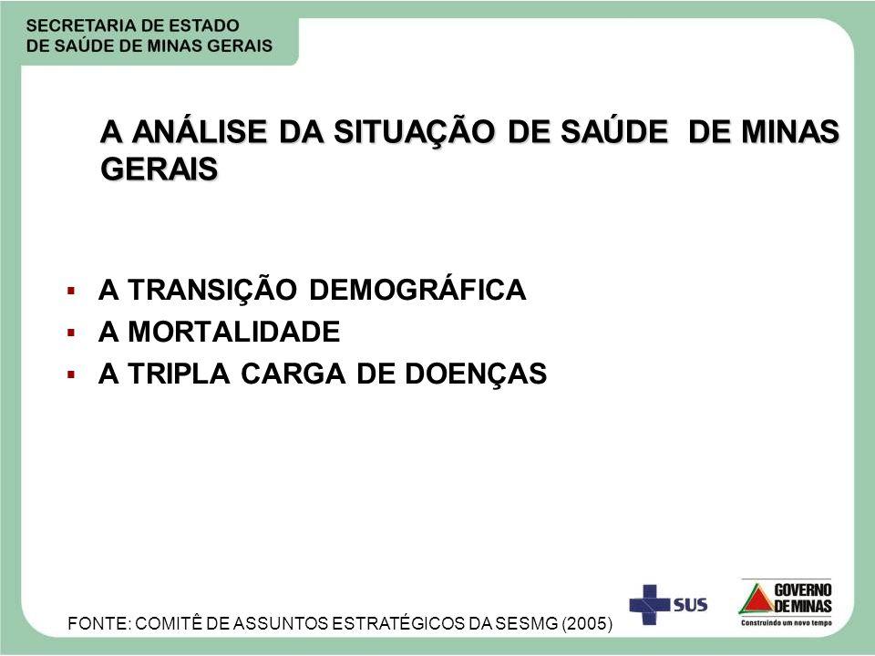 A ANÁLISE DA SITUAÇÃO DE SAÚDE DE MINAS GERAIS