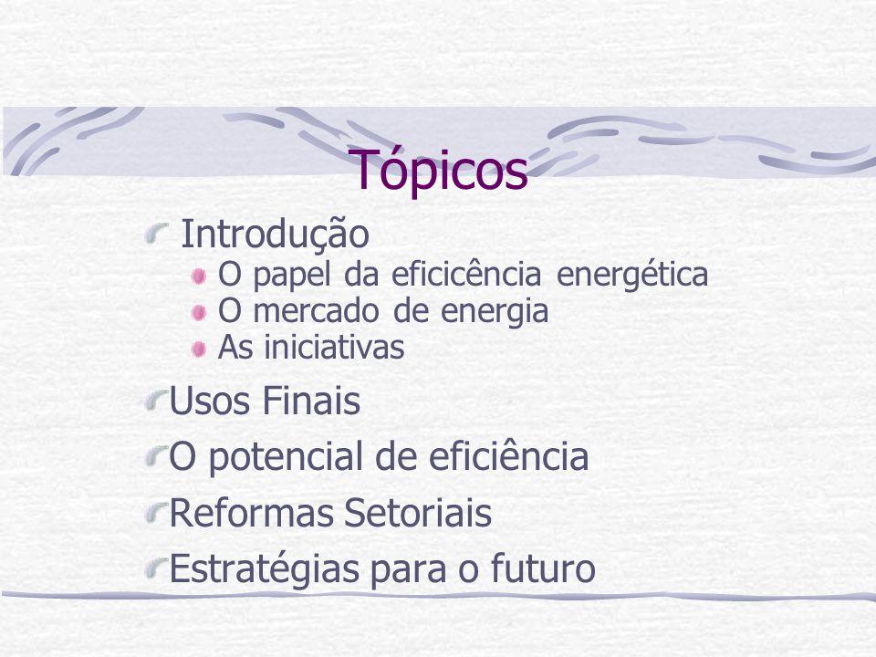Tópicos Introdução Usos Finais O potencial de eficiência